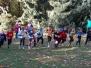 Bezirksmeisterschaften Crosslauf 2013-10-19
